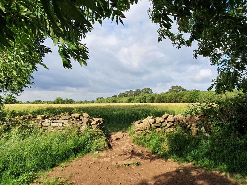 Footpath through dry stone wall