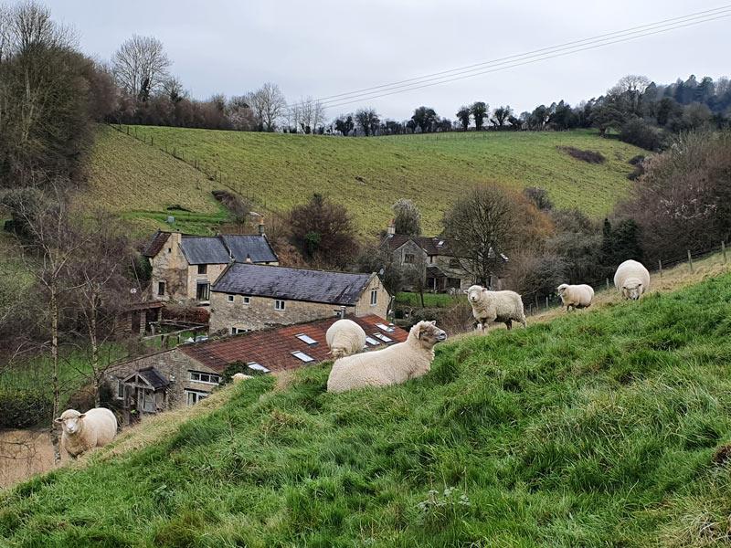 Upper Midford Farm