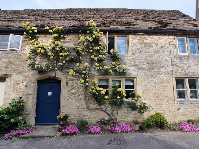 Rose-covered cottage, Lacock